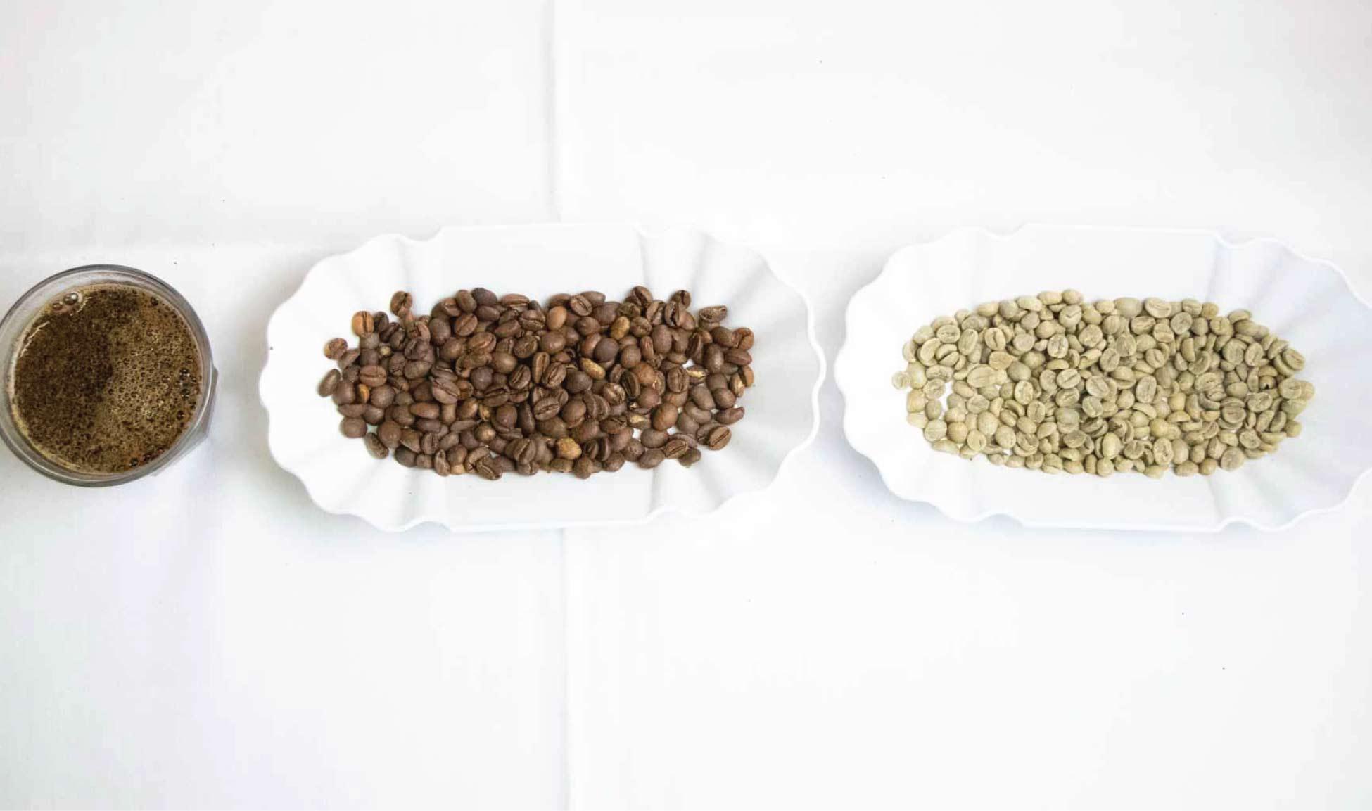 Deine Kaffee Eigenmarke – B2B Rösterei Service Guide Berlin