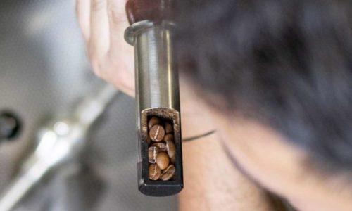 Aromaprobe beim Kaffeerösten
